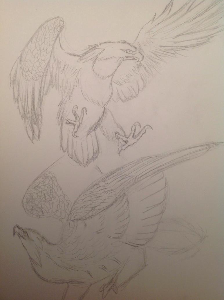 Eagle2 by Rainsworld47