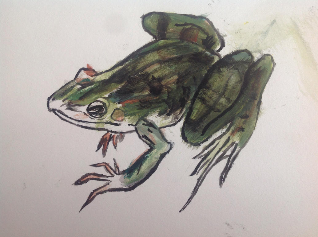 Watercolor frog by Rainsworld47