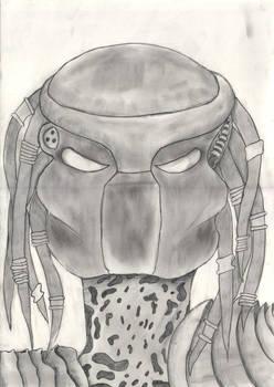 Predators portraight-Grey
