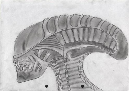 Stunted xenomorph original