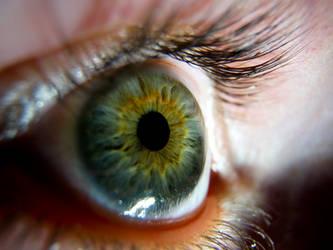 Side Eye Stock
