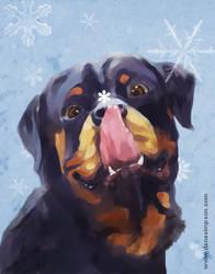 Christmas Card by DanaeOP