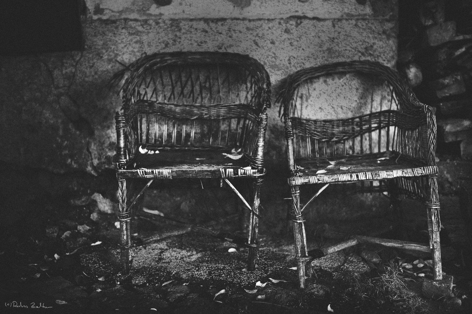 senatorial chairs by radicszoltan