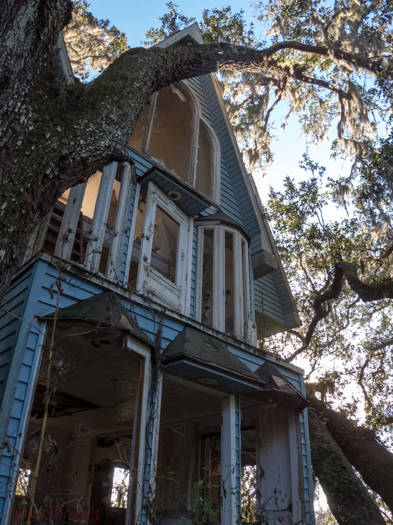 Honky Ranch Treehouse by dropcik