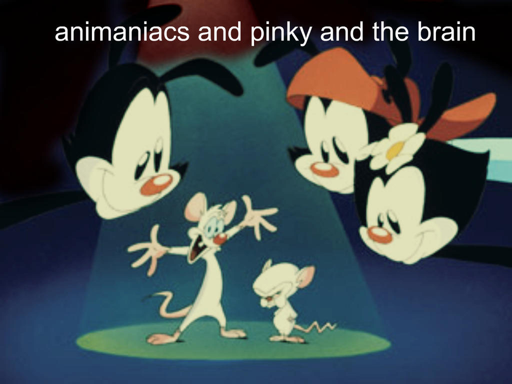 Animaniacs and pinky and the brain