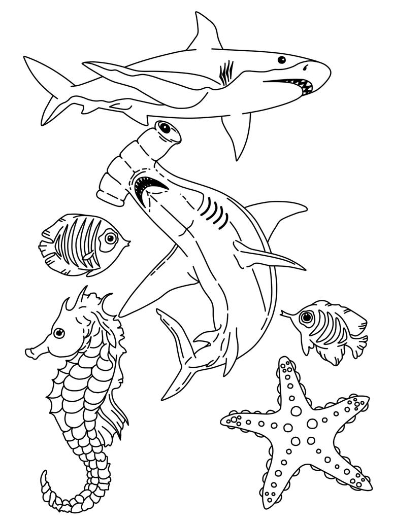 Sea Life Coloring Pages Deep Sea Life Coloring Pages Coloring Pages