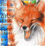 Golden Red Fox