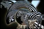 Zebra in his fractal habitat