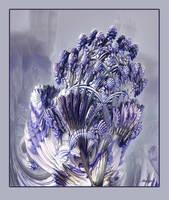 Lavender by marijeberting