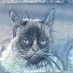 Sculpture Grumpy Cat
