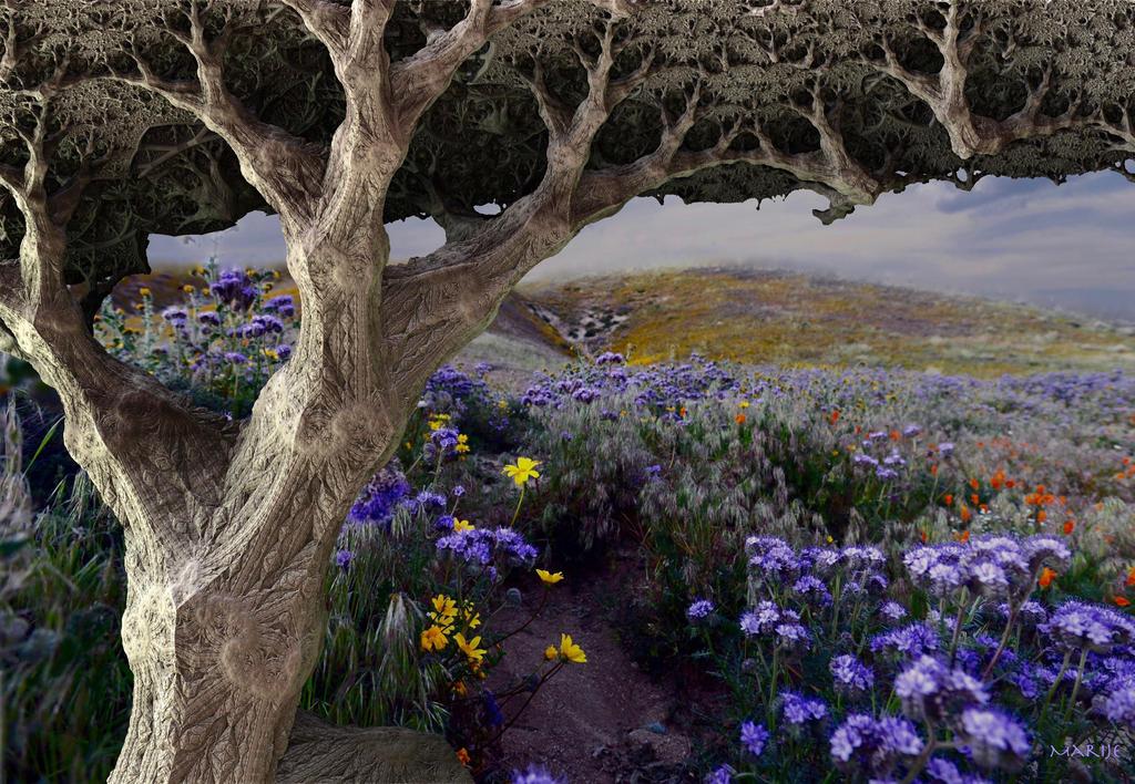 Oak tree on flower field by marijeberting