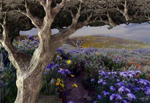 Oak tree on flower field