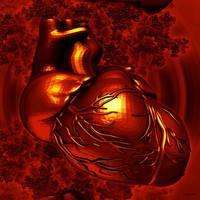 Cardiovasculair System by marijeberting