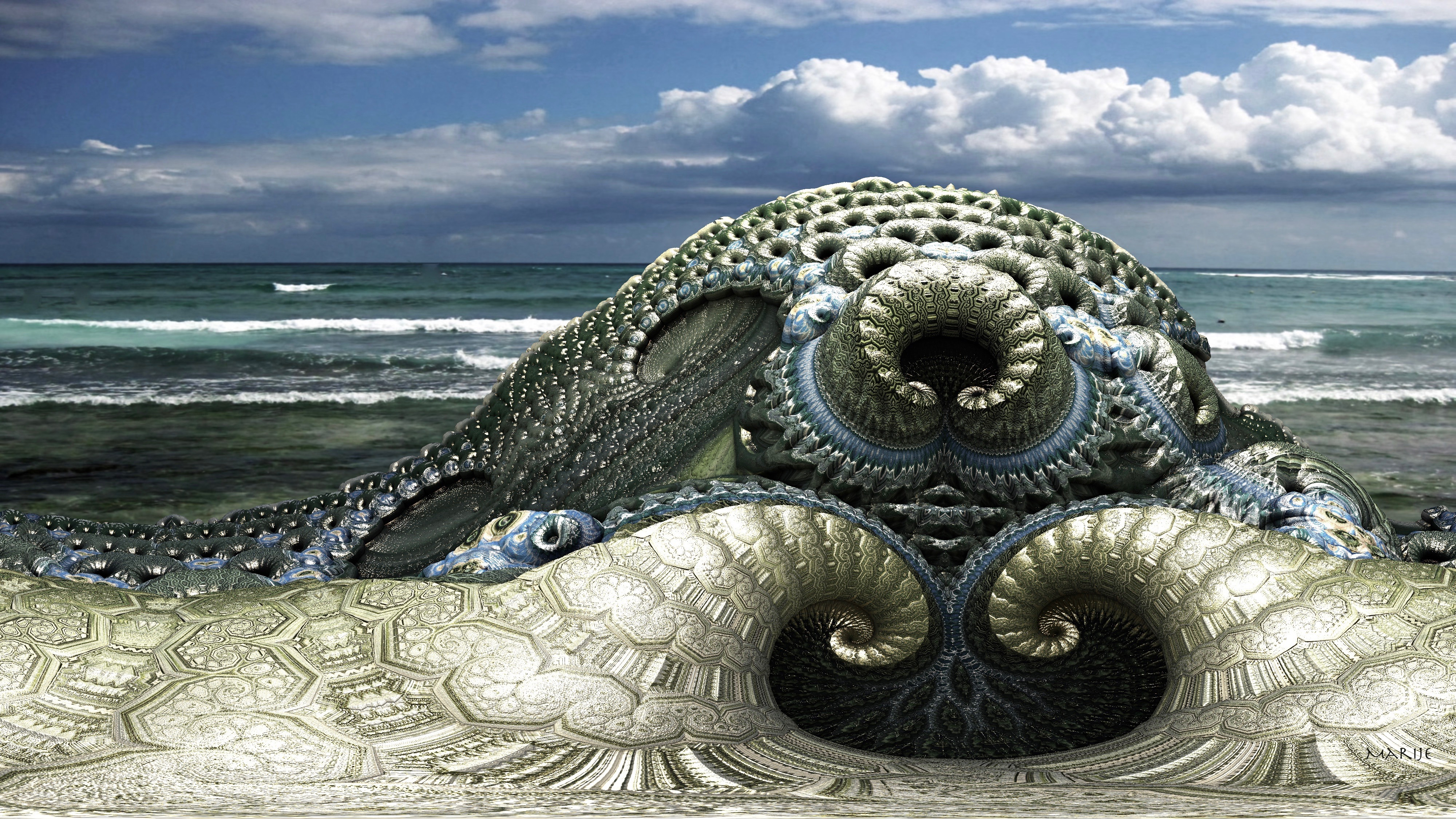 Giant Sea Creatures Found