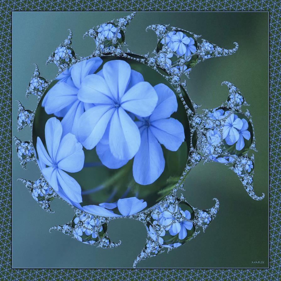 Blue Flowers for Gigi by marijeberting