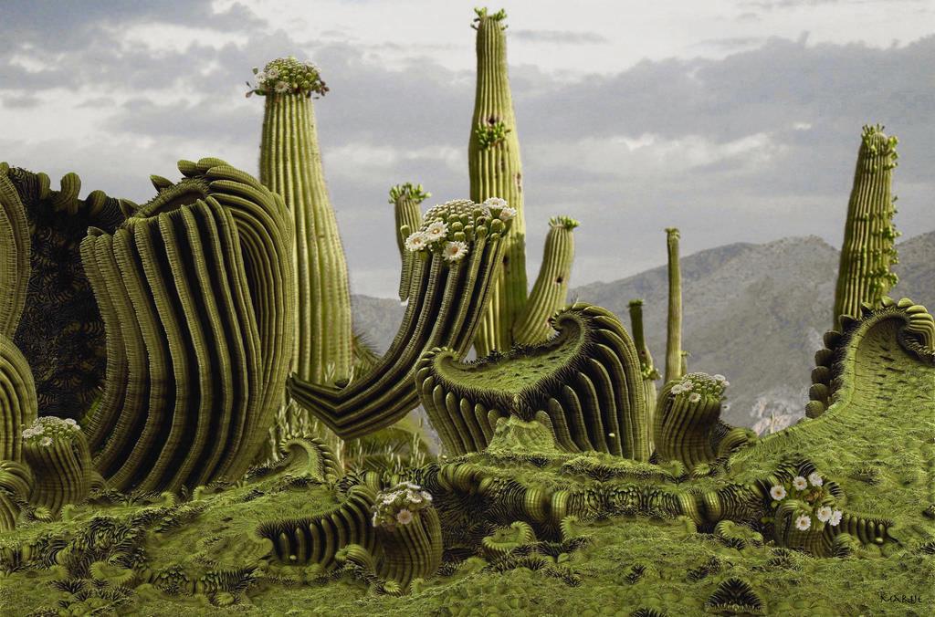 Flowering Saguaro in the Sonoran Desert in Arizona by marijeberting
