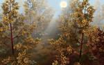 Sunny Autumn Afternoon