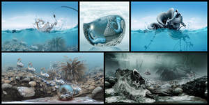 Some of my underwater worlds in 2018