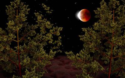 Total Lunar Eclipse 21-1-2019