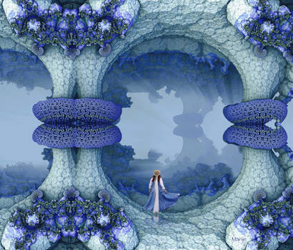 Walking in a bluebell wonderland ...