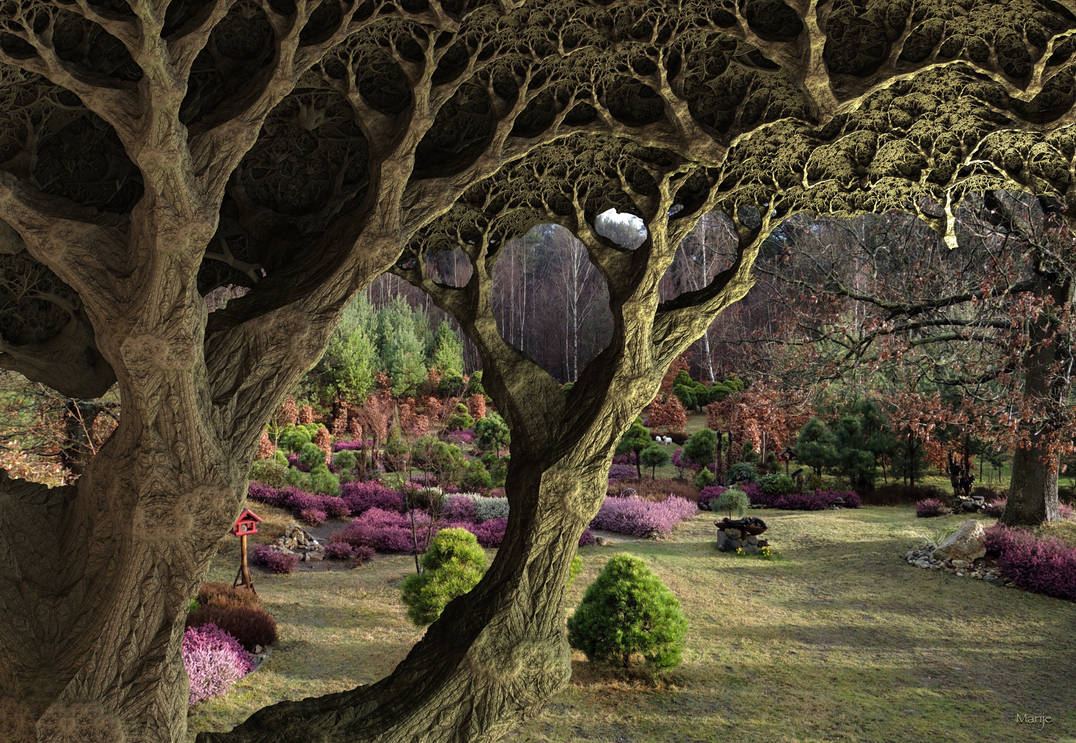 My winter heather garden with fractal oak ... by marijeberting
