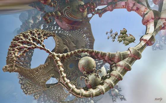 Ghost net tangled on a rocky reef by marijeberting