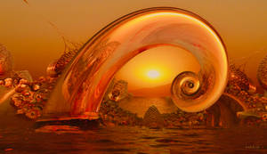 A radiating Sunset Shell