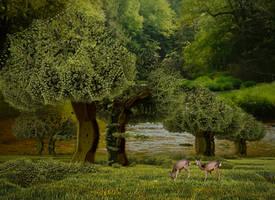 Deer at the water's edge by marijeberting