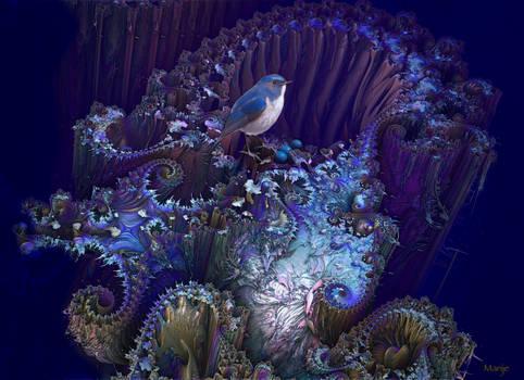 Blue Robin eggs in nest by marijeberting