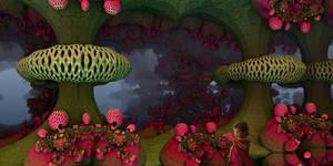 Wild Strawberries ...