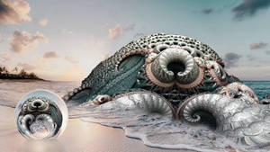 Sea creature washed up on shore at sundown ...