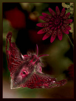 Fractal flower attracts fractal butterfly ...