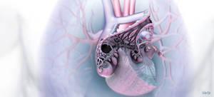 Print Human Heart ...