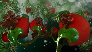 Christmas Holly ...