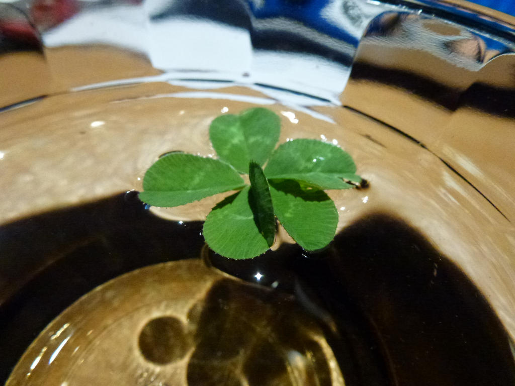FIVE Leaf Clover by Spaceman130