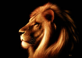 lion king by MRCS
