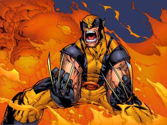 Studies Wolverine by HectorRubilar