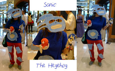 My Sanic The Hegehog Cosplay by CoolKaius
