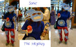 My Sanic The Hegehog Cosplay