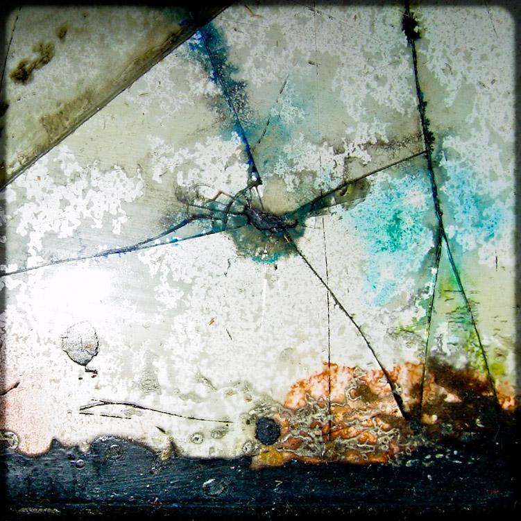 cracked by birgzett