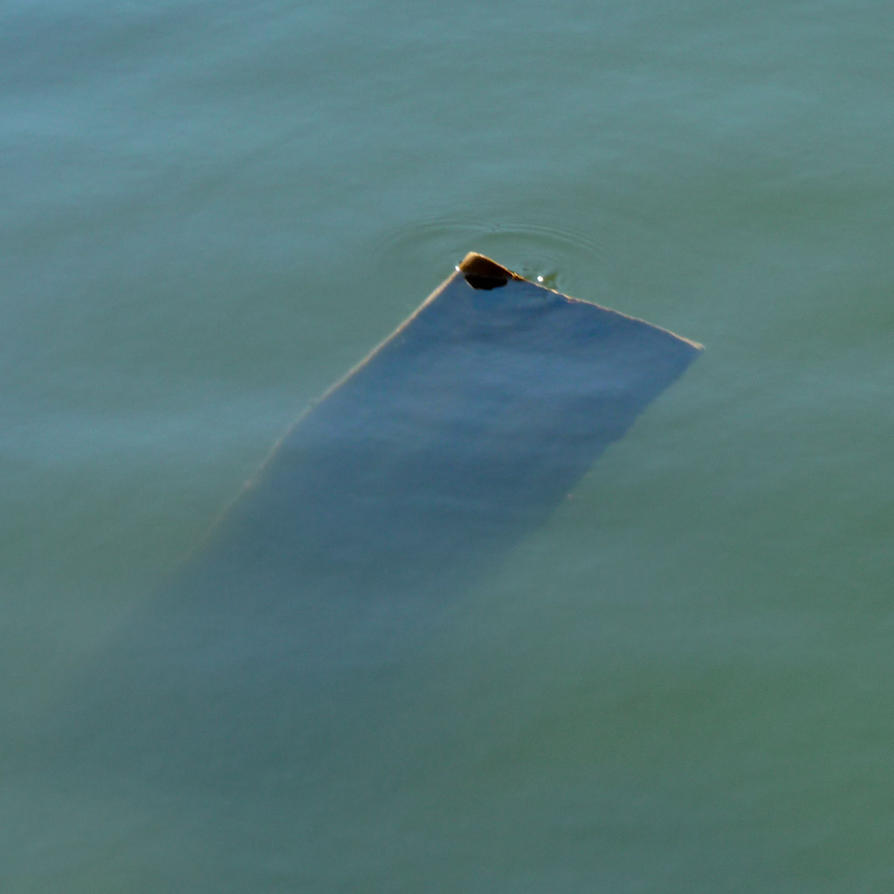 floating 6 by birgzett