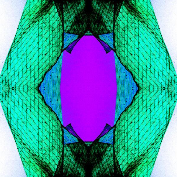 Lilac Gate by birgzett