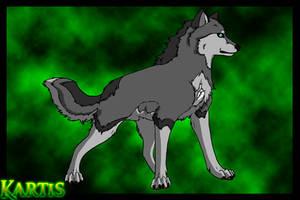 Kartis Profile by Chylk