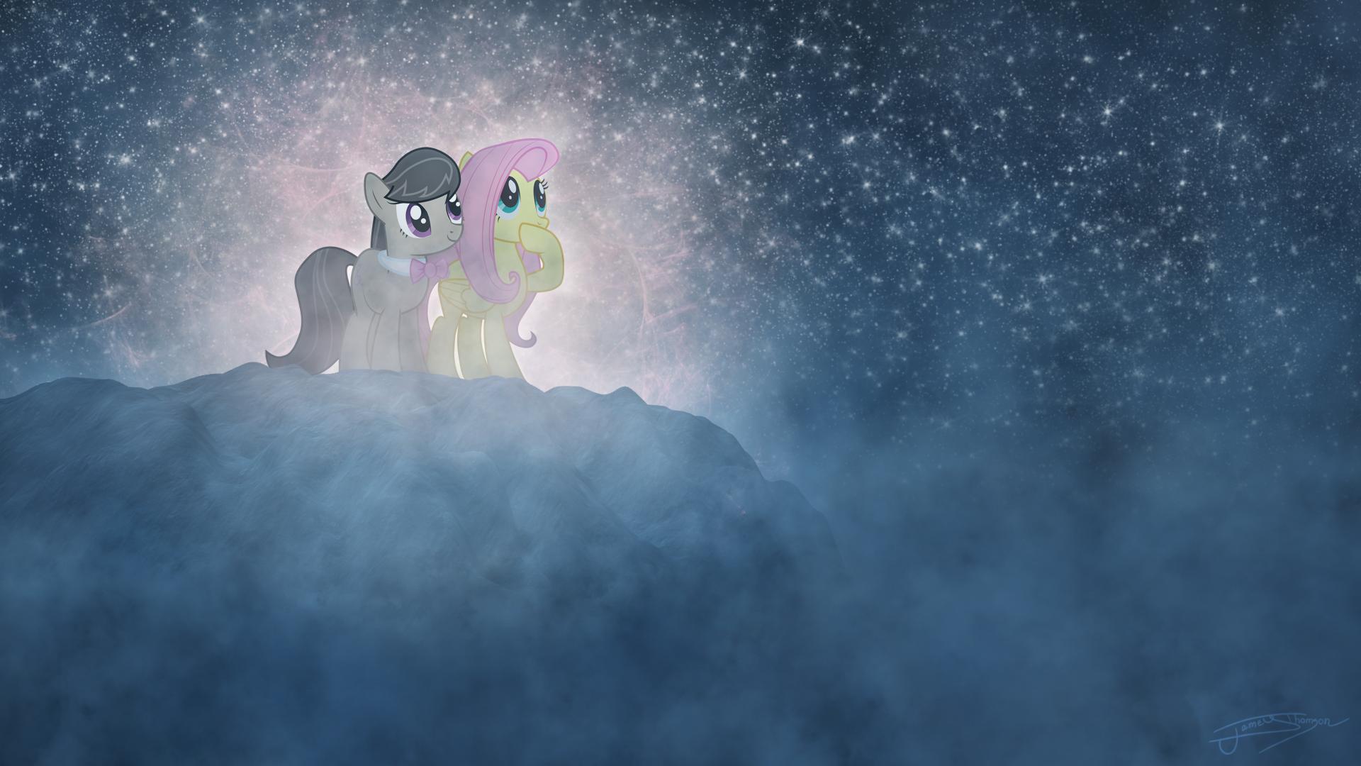 A Night of Stargazing