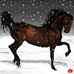 Winter Wonderland by keirper