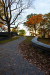Rockwood Park - Upstate NY by WickedOwl514