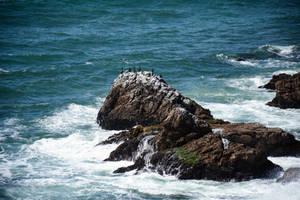 Along the Coast by WickedOwl514