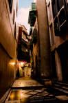 The Old Dark Lane by ashamandour