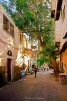 Simply Damascus by ashamandour