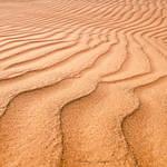 Lines by ashamandour